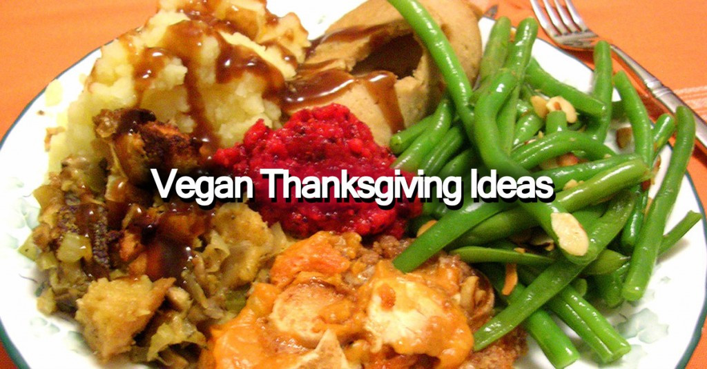 Vegan Thanksgiving Ideas  Vegan Thanksgiving Ideas Save The Turkeys