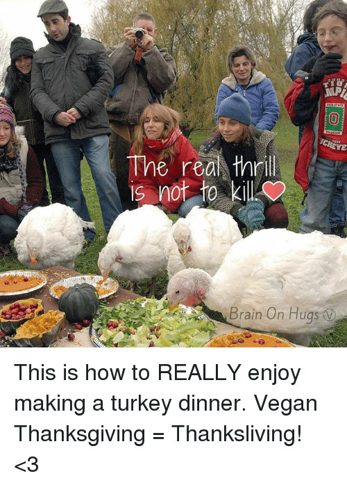 Vegan Thanksgiving Meme  25 Best Vegan Thanksgiving Memes
