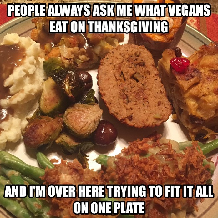 Vegan Thanksgiving Meme  A soy Bean Thanksgiving and a Noodle Pudding Miracle