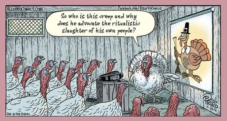 Vegan Thanksgiving Meme  Vegan thanksgiving Wake up and ic on Pinterest
