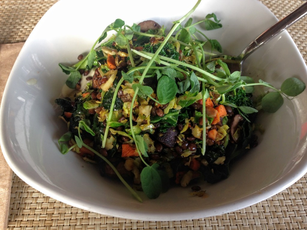 Vegetarian Fall Dinner Recipes  12 Must Have Ve arian Fall Recipes Treading Lightly